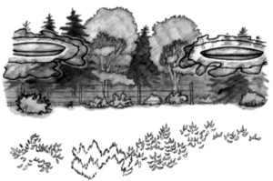 9, Sheradon cabin, disc reappearing ahead of itself